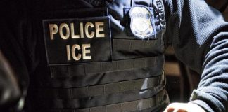ICE-2-e1586365942850.jpg