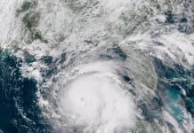 hurricane michael satellite image