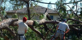hurricane-michael-cleanup-525x420.jpg
