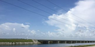 tamiami trail in everglades national park