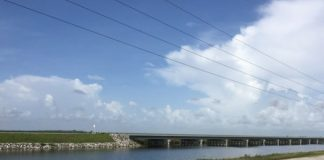 tamiami-trail-in-everglades-national-park-525x420.jpg