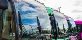 lynx bus