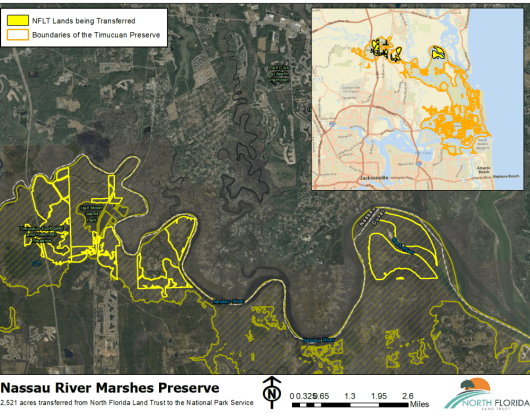 nassau river marshes preserve 525x420
