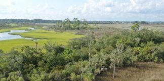 Intracoastal-Islands-525x420-1.jpeg