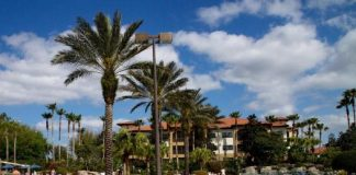 florida timeshare_vacatiadotcom 525x420