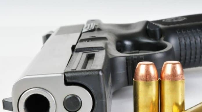 gun and ammo_canstockphoto5448778 1000x800